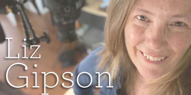 Liz Gipson Widgets